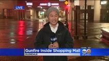 Gunfire Inside Glendale Galleria During Attempted Robbery