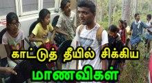 தேனி குரங்கணி காட்டுத் தீவிபத்து 8 பேர் பலி.. சிக்கியவர்களின் விபரம்- வீடியோ