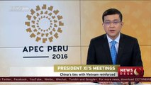 Chinese President Xi discusses bilateral ties with Vietnam's Quang