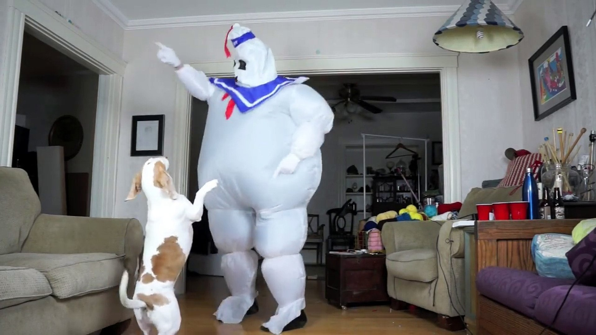 Dogs vs. Dancing Marshmallow Puft Man- Funny Dogs Maymo & Penny