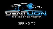 PDR   Paintless Dent Repair   Spring TX   Dent Lion