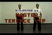 Wing Chun with Terence Yip Wing Chun Kicks Part 1