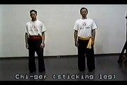 Wing Chun with Terence Yip Wing Chun Kicks Part 7