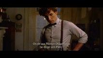 """""""Les Animaux Fantastiques 2 - Les Crimes de Grindelwald"""" : Bande-annonce officielle (VOSTFR)"""