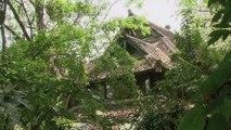 Spectrum Asia — A Rainforest Dream Trailer 09/25/2016 | CCTV
