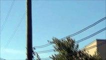 Daytime UFOs over Quebec, Canada