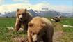 La mythification de l'Alaska dans le cinéma américain - Agathe Périn