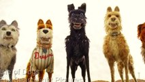 Bill Murray Acts like A Dog In Wes Andersons' 'Isle Of Dogs'