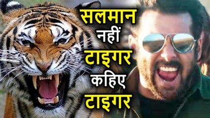 Race 3 के Shooting Set पर Salman Khan को सभी बुलाते हैं Tiger, ये है वजह
