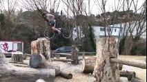 Il escalade des troncs d'arbres en vélo !