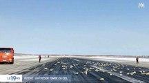 Un avion russe perd trois tonnes de lingots d'or - ZAPPING ACTU HEBDO DU 17/03/2018