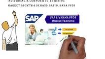 S4 HANA PPDS in SAP   SAP S4 HANA PPDS Online Training Video