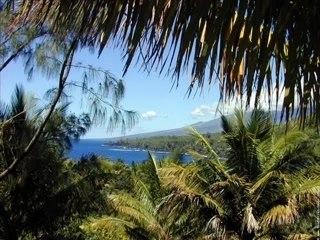 La Réunion, pour tous les creoles qui ont quitté leur île