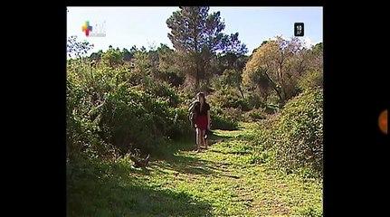Mca5 Carlos e Sônia a história parte 33