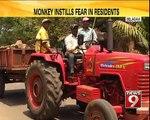 Belagavi, monkey instills fear in residents- NEWS9