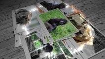 PHOTOYAGE - une touche de couleur adaptative - a touche of color adaptive