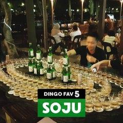 [DINGO FAV 5]SUPER KOREAN THINGS TO DO WITH SOJU