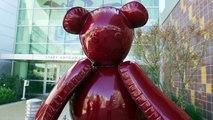 LA Galaxy Visit Children's Hospital Los Angeles
