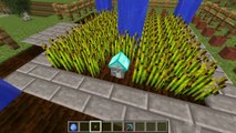 PopularMMOs Minecraft  DIAMOND ORE HOUSE! (MINING INSIDE DIAMONDS!)