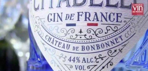 Six gins français à goûter absolument !