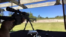 Savage Stealth 338 Lapua Magnum