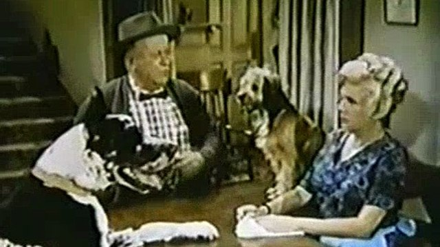 Petticoat Junction S04E14 My Daughter The Secretary