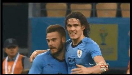 Cavani   What   Amazing  Goal    Pele   Style   (2:0)  Uruguay - Czech Republic