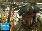 Les Indiens au Salon du Cheval