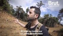 Déforestation à Bornéo : le grand JD raconte