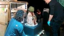 Expo Star Wars: Maître Yoda est arrivé à Bruxelles