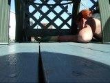 Grignotte mon écureuil roux d'amérique