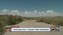 Top stories: Jesse Wilson remains found, kids found dead in Superior, Prop 123,