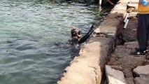 Bodrum'da deniz dibi temizliği sürüyor - MUĞLA