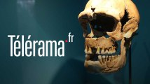 Visite guidée : Neandertal à sa juste place