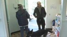 Amiens : des chiens pour soigner les troubles psychiatriques - 30/03/2018