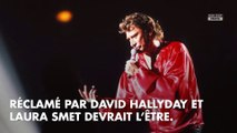 Procès Johnny Hallyday : David Hallyday soutenu par Laura Smet et Estelle Lefébure