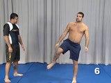 Secrets of Chute Boxe   Vol 2   The MMA Clinch