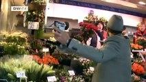 Das schönste Land der Welt: Michael Wigge auf dem Hamburger Fischmarkt | euromaxx