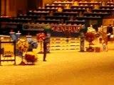 Tour d'honneur du prix  salon du cheval (2007)