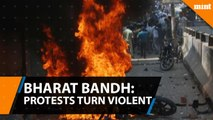 Bharat Bandh- Protests turn violent%2C deaths reported in UP%2C MP%2C Rajasthan