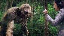 Beowulf Return To The Shieldlands S01E10 E 10