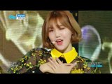 【TVPP】 OH MY GIRL - 'Secret Garden',오마이걸 - 비밀정원 @Show Music Core 20180127