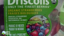 Organic strawberries, conventional strawberries and pesticides 3-14-new ,  Organic Slant