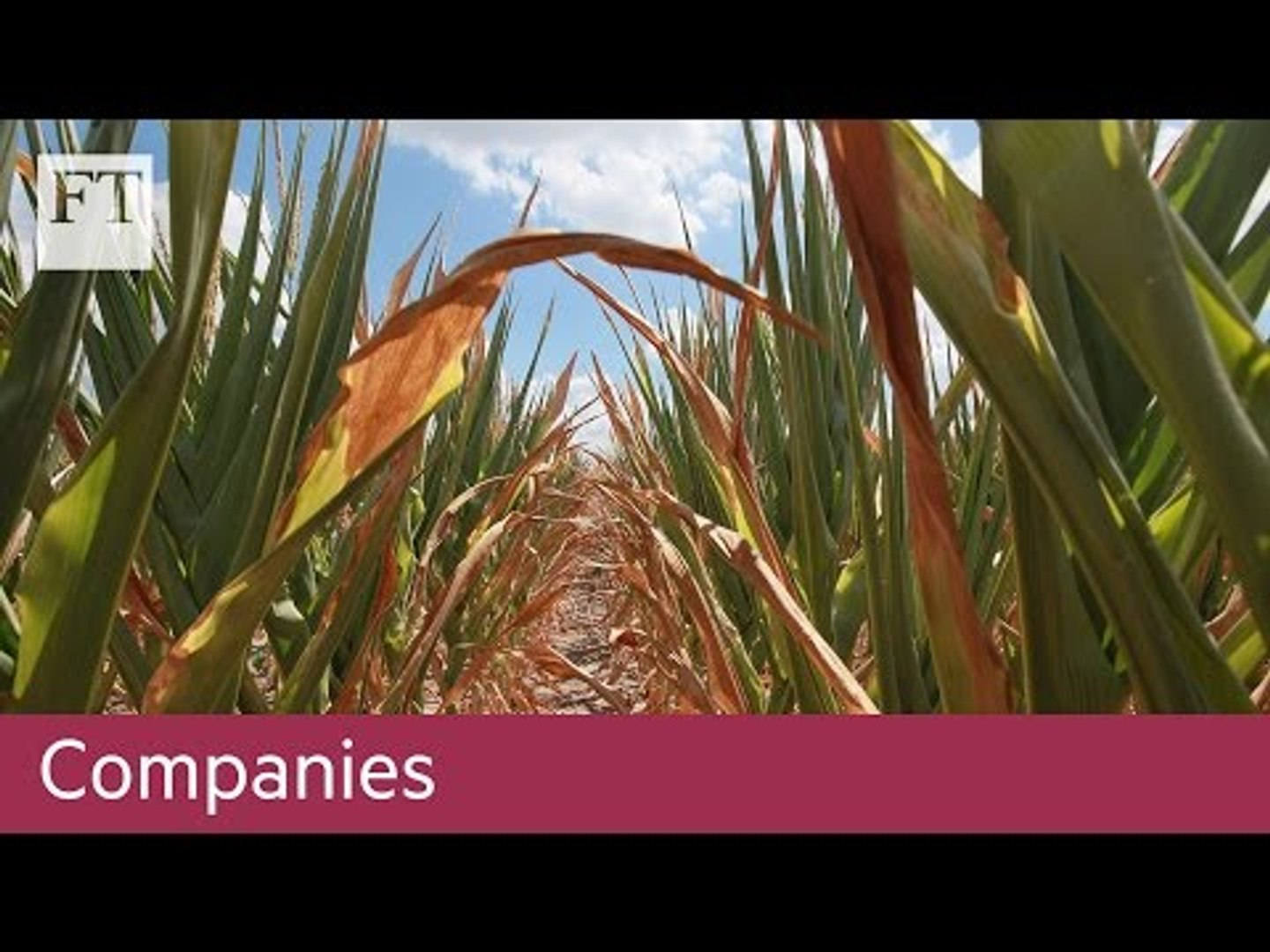 Cargill on Trump and trade | Companies