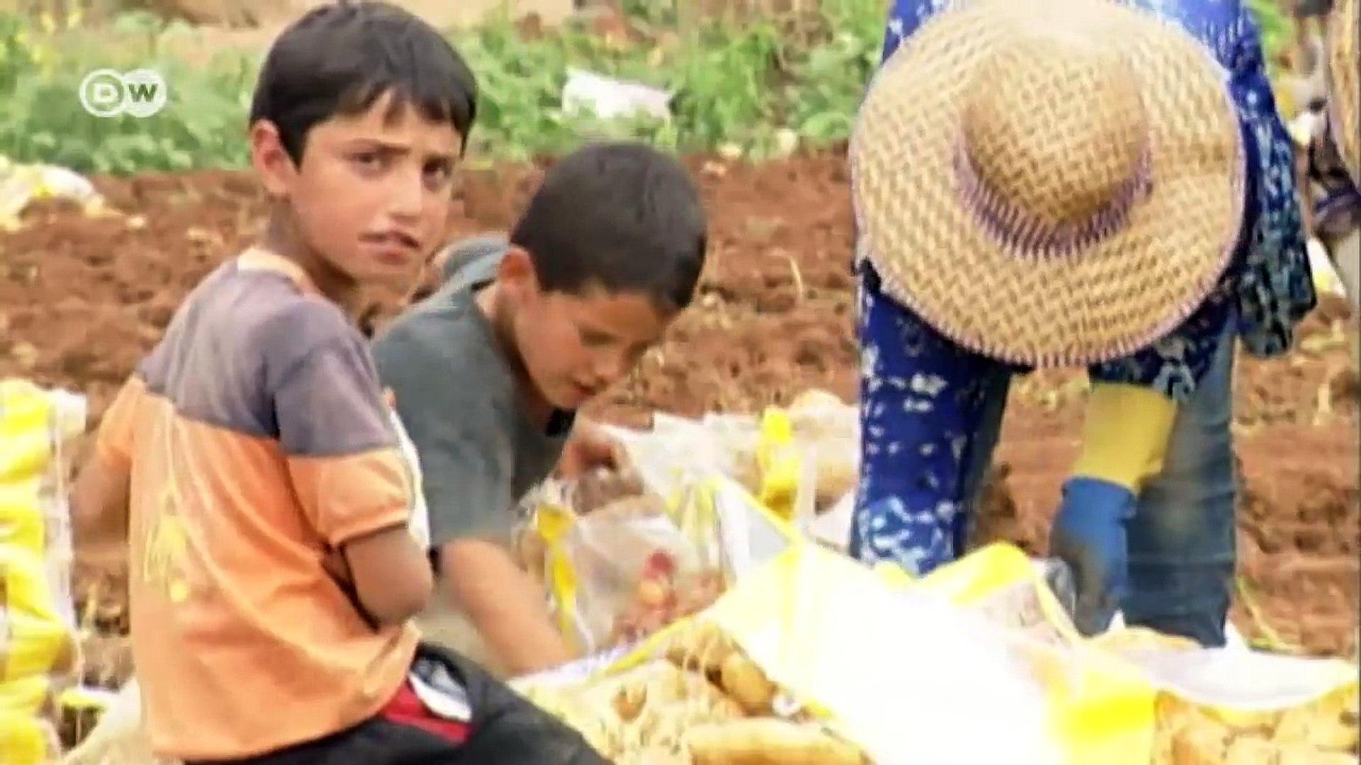 Explotación laboral de niños en Líbano | Reporteros en el mundo