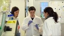 Cultivos celulares en lugar de experimentación con animales | Visión futuro