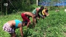 Brasil: agricultores bajo presión