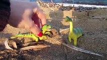 Dinosaurios de juguete encuentran huevos de dinosaurio en la playa | Nacimiento