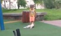 Un chat se venge d'une petite fille qui lui marche dessus !