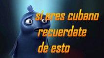 Humor y entretenimiento si eres cubano recuerdate de esto1